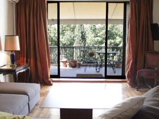 Stunning apt, great views, sleeps 6 - Athens vacation rentals