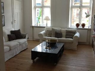 Cozy Copenhagen apartment at the Kartoffelraekker area - Copenhagen vacation rentals