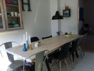 Lovely large Copenhagen apartment just at Enghave Park - Copenhagen vacation rentals