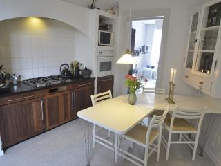 Large family friendly Copenhagen apartment - Copenhagen vacation rentals