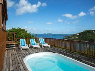 Blue Tang - Saint John vacation rentals
