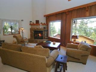 1131 Altdorf - Incline Village vacation rentals