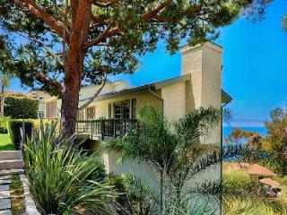 Newly remodeled Laguna Beach House offers ocean views, wraparound deck & parking - Terres Basses vacation rentals