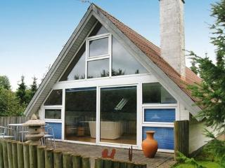 Ålbæk/Salling ~ RA17056 - West Jutland vacation rentals