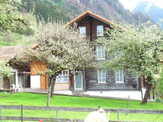 Vacation Home in Gsteigwiler - 1507 sqft, quiet, bright, traditional (# 5213) - Swiss Alps vacation rentals