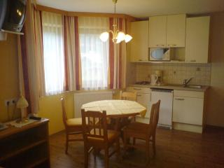 Vacation Apartment in Mayrhofen - 366 sqft, beautiful, central, bright (# 5227) - Innsbruck vacation rentals