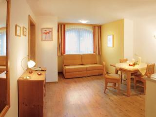 Vacation Apartment in Mayrhofen - 431 sqft, beautiful, central, bright (# 5230) - Tirol vacation rentals