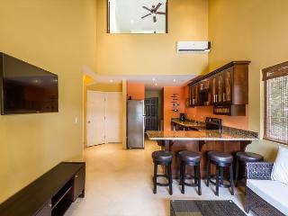 LUXURY CONDO JUST 10 MINUTES FROM BEST BEACHES IN GUANACASTE - Osa Peninsula vacation rentals