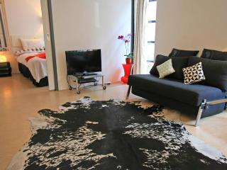 The Rabbit Street Apartment - Amsterdam vacation rentals