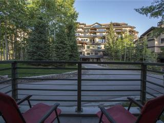 Blue Mesa Lodge 23C - Southwest Colorado vacation rentals