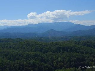 Beary Special Cabin - Sevierville vacation rentals