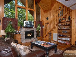 Bearview Cabin - Sevierville vacation rentals