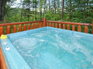 Nice 'N' Knotty Cabin - Sevier County vacation rentals