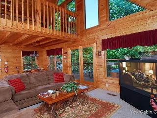 Altitude Adjustment Cabin - Tennessee vacation rentals