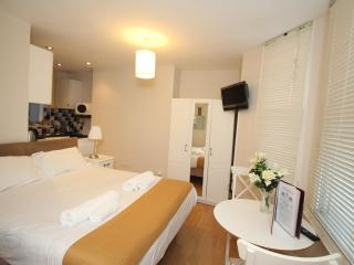 Delightful West London Studio Apartment - London vacation rentals