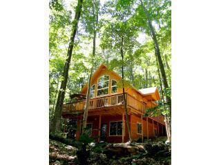 Cedar Lake Lodge - Arcadia vacation rentals