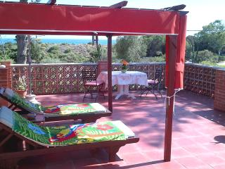 Patio Room Apartment,  relax beachside and natural - Marbella vacation rentals