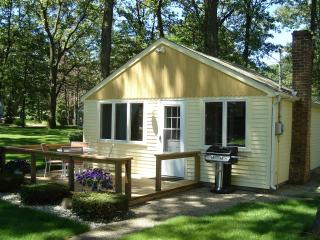 Summer Place 336 Cute Yellow Cottage - Holland vacation rentals
