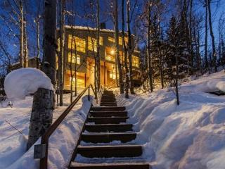 Luxury on Edgewood with Direct Ski Access to Fanny Hill and Private Outdoor Hot Tub - Park City vacation rentals
