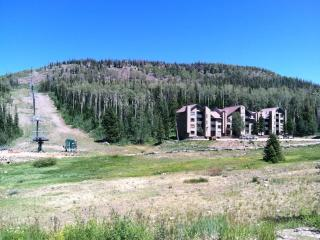 Location & Best Price! Stones throw from Chair 1 - Ski IN/OUT! 207 - Brian Head vacation rentals