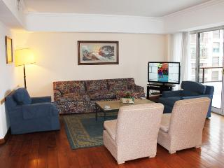 Incredible apartment in Libertad and Marcelo T Alvear st, Recoleta. (232RE) - Buenos Aires vacation rentals