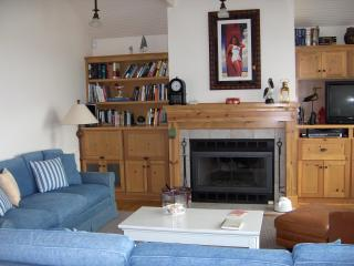 #131 Whale's Tail Cottage - Pacific City vacation rentals