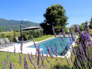 Provencal character house with pool - Rhone-Alpes vacation rentals