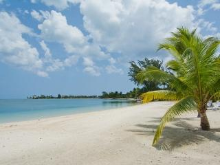 Gardens of the Kai #9 - Cayman Islands vacation rentals