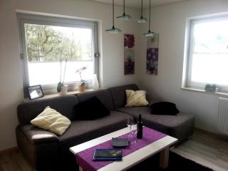Vacation Apartment in Rammelsbach - 646 sqft, playset, grill (# 2431) - Rhineland-Palatinate vacation rentals
