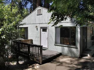 BLUE JAY HIDEAWAY - Russian River vacation rentals