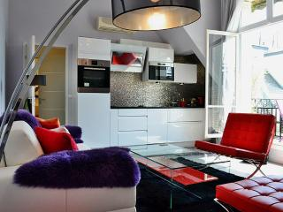 Splendid 1 BR on Champs Elysées  - P8 - Paris vacation rentals