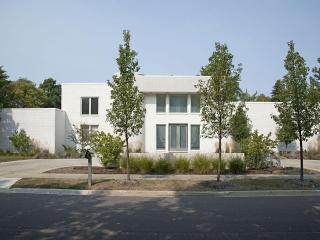 Contemporary House in the Suburbs of Chicago - Chicago vacation rentals