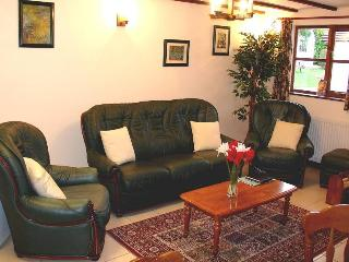 Badger Cottage Forest of Dean, Walk, Cycle, Relax - Lydney vacation rentals