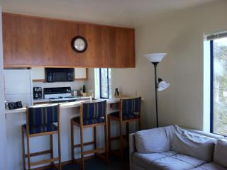 Ski in & out Condo - Truckee vacation rentals