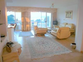 Magnificent 2 Bedroom Apartment on Cap d'Antibes - Antibes vacation rentals