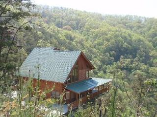 Amazing Views, 3 fireplaces, Hot Tub, fast WIFI - Sevierville vacation rentals