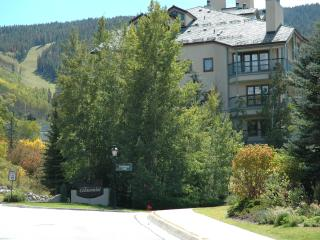 3 Bedroom Condominium - Unit 15 The Centennial - Avon vacation rentals