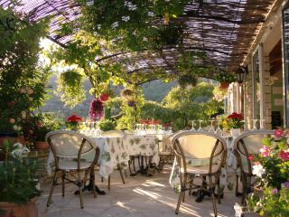 Bed & Breakfast Le Grand Jardin - Provence vacation rentals