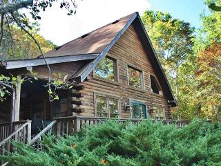 Owl's Lookout - Sylva vacation rentals