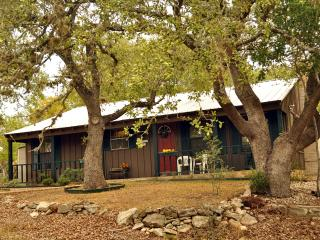 Rustic Cabin Minutes from Canyon Lake - Canyon Lake vacation rentals