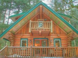 Kohler Bear Cabin-Charming Log Home - Glacier vacation rentals