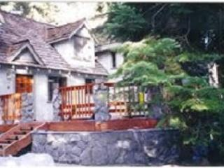 Tahoe Lake Dream House - Carnelian Bay vacation rentals