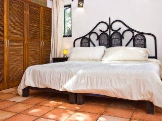 Playa Car Spacious home w/ Van, WIFI, pool - Playa del Carmen vacation rentals