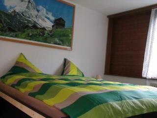 4 1/2 room flat 2 toilets views of river,waterfall - Lauterbrunnen vacation rentals