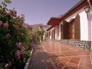 Villa 4km from Granada center 4 bedrooms, 9 sleeps - Cenes de La Vega vacation rentals