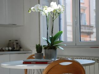 Sun Filled Apartment in Tortona Area - Milan vacation rentals