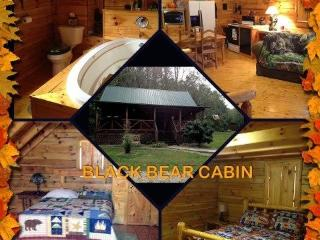 Cabin in Southeastern part of Ohio - Wellston vacation rentals
