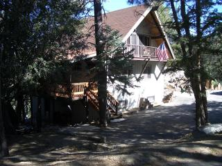 Mountain area in a private communityof So. Calif. - Idyllwild vacation rentals