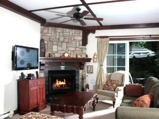 Magnificent spacious condo  overlooking Tremblant - Mont Tremblant vacation rentals
