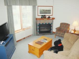 Hearthstone Lodge Village Ctr - HS318 - Sun Peaks vacation rentals